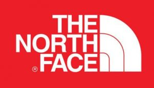 The North Face Logo Design History and Evolution